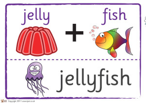 Jelly + Fish = Jellyfish
