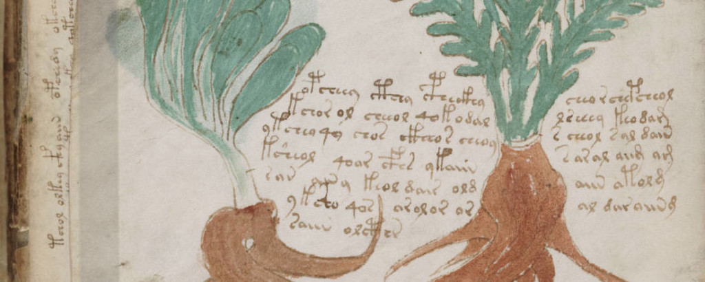 Voynich Plants